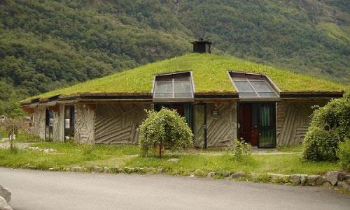 Газон на крыше дома