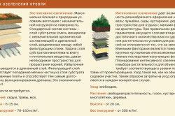 Виды кровельного озеленения