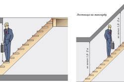 Просвет лестницы