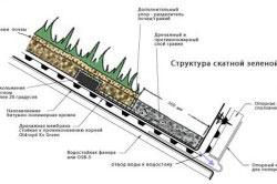 Структура скатной зеленой кровли