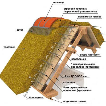 Схема устройства камышовой