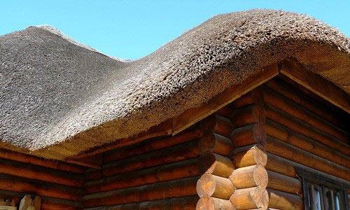 Крыша из камыша. Камышовая
