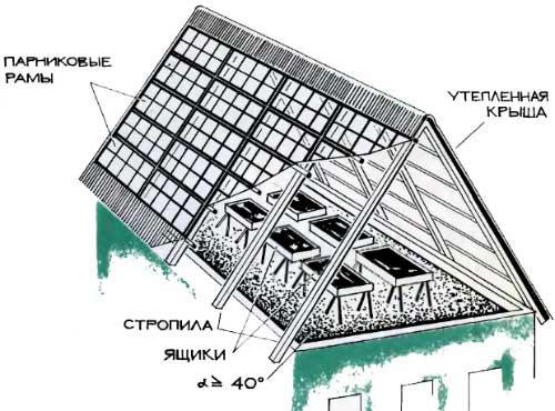 Как построить крышу теплицы своими руками фото - Секрет мастера