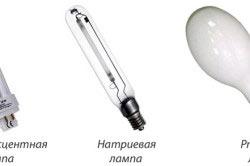 Виды ламп для теплиц