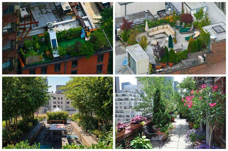 Для сада на крыше подходит плоская крыша или же инверсионная, с пешеходным покрытием.