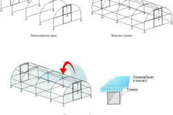 Схема  монтажа поликарбоната на теплицу округлой формы
